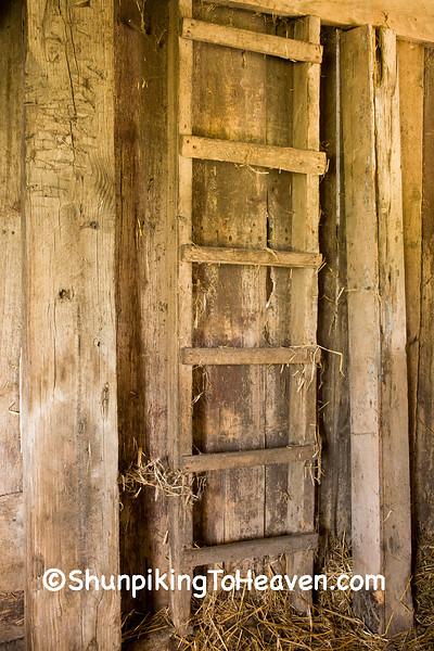 Barn Ladder to Hay Mow, Delaware County, Iowa