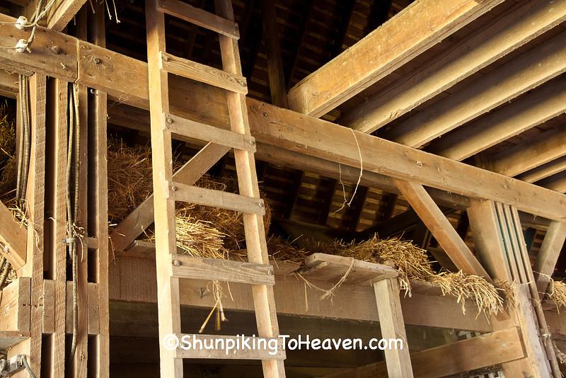 Hay Mow with Ladder, Beeler Barn, Madison County, Iowa