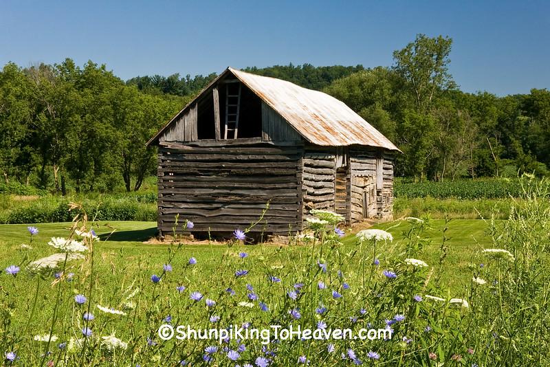 Log Barn in Summer, Vernon County, Wisconsin