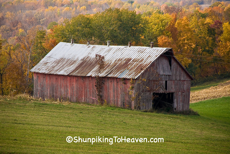 Faded Red Tobacco Barn in Autumn, Richland County, Wisconsin