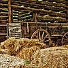Tipton-Haynes Historic Site, Johnson City, Tennessee