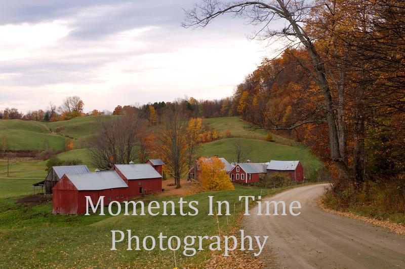 Jenne Farm in Woodstock+-