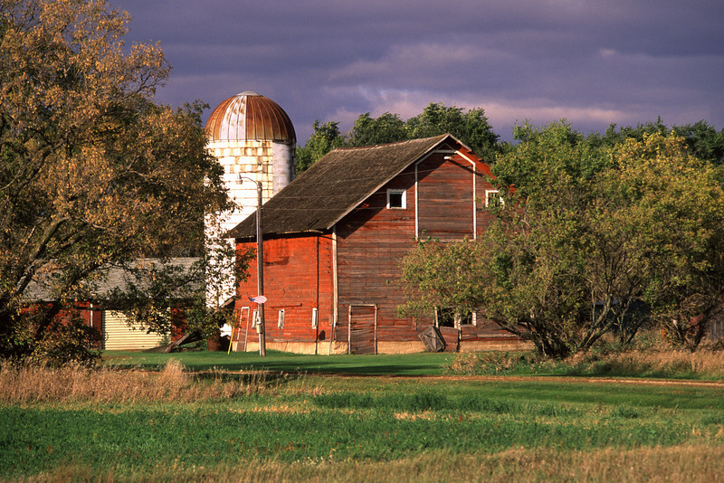 Stearns Co. Barn - 01