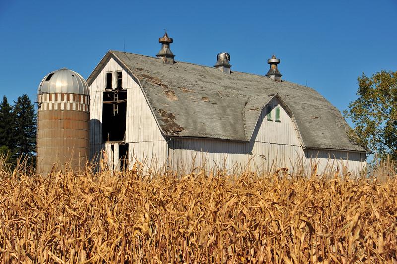 Grambrel roof barn in Fillmore County
