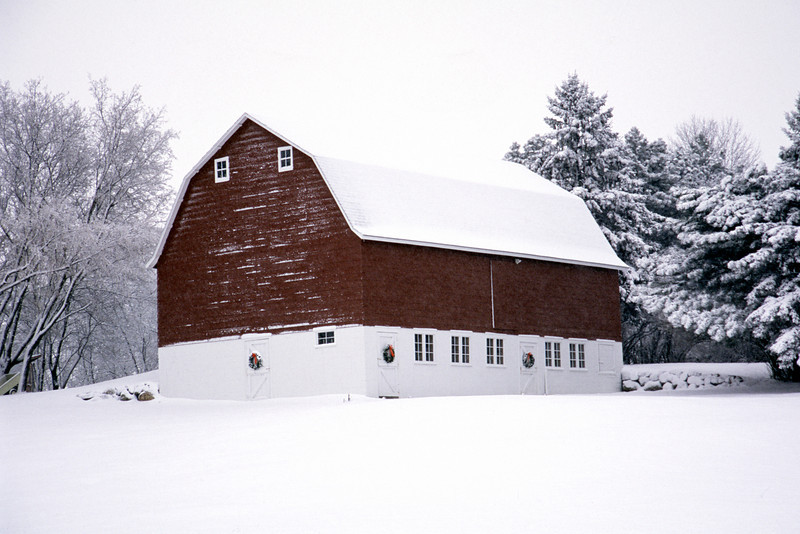 Christmas Barn - Plymouth, MN