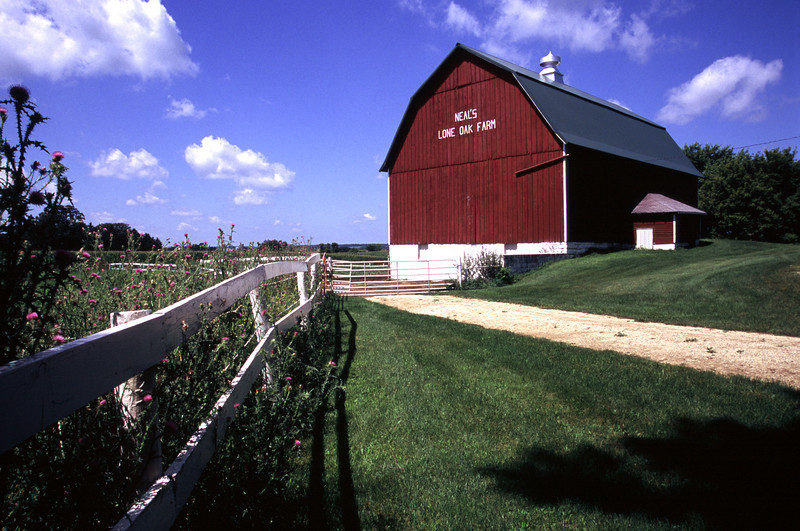 Goodhue County Barn
