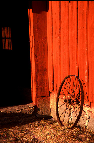 Wagon wheel in the morning light