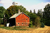 Old barn with windmill - Waseca, Co.