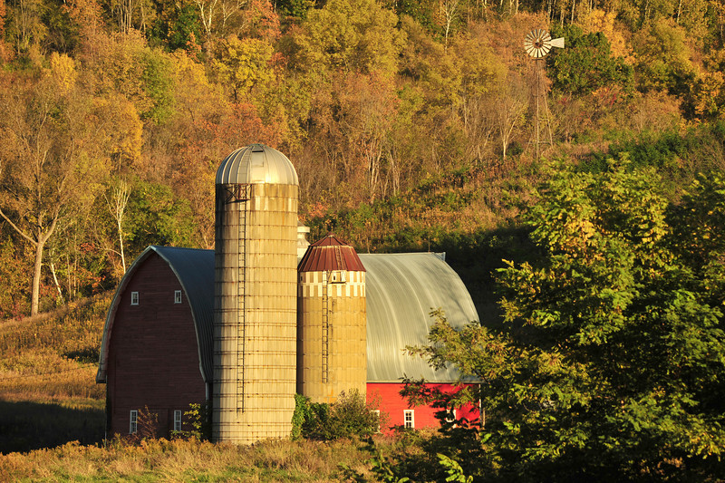 Winona County red barn