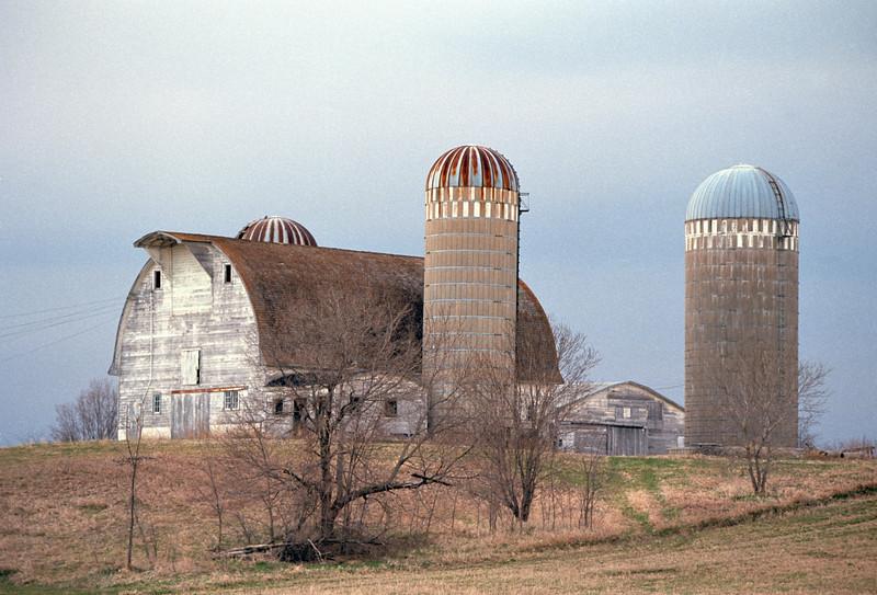 Dairy Barn - Wright County