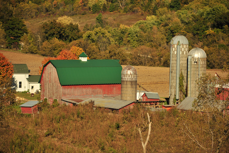 Green roof barn - Houston Co.