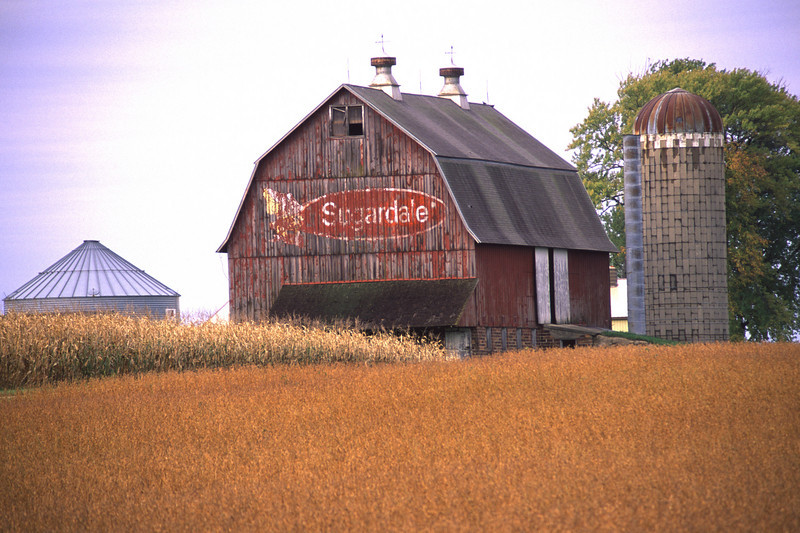 Sugardale Barn - 01 - Rice Co.