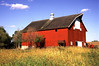Waseca Co. Barn