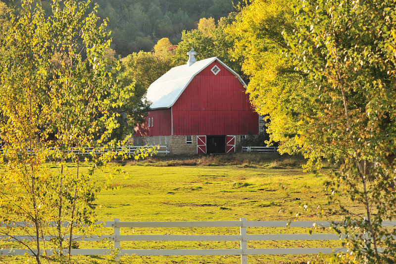 Glow of the fall evening light on a great red barn.