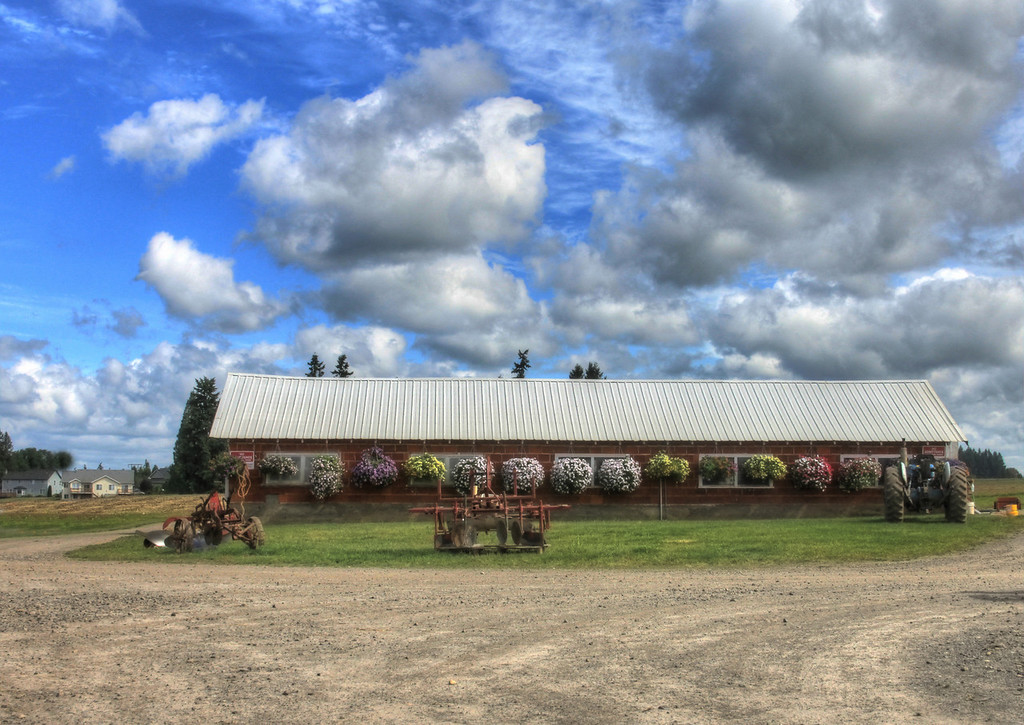 Bizi Farm HDR