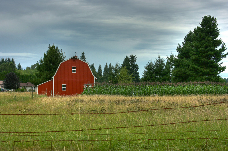 red barn-corn2008hdr