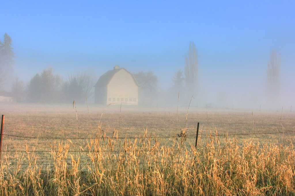 Barn in the fog sunbreak