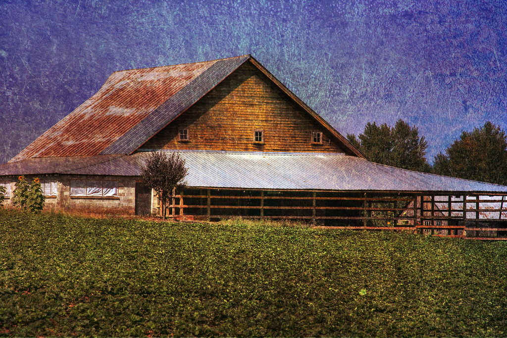 new barn 08 textured