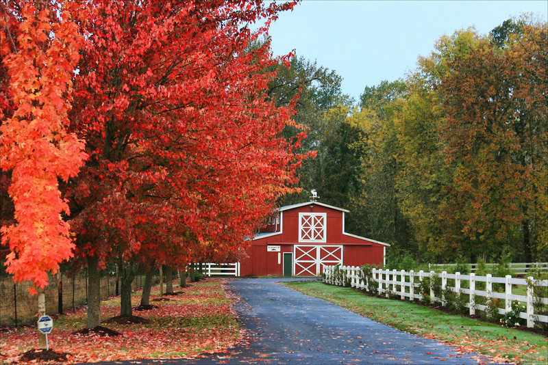 red barn autumn colors