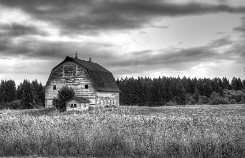 _barn in the countryside gray- scale