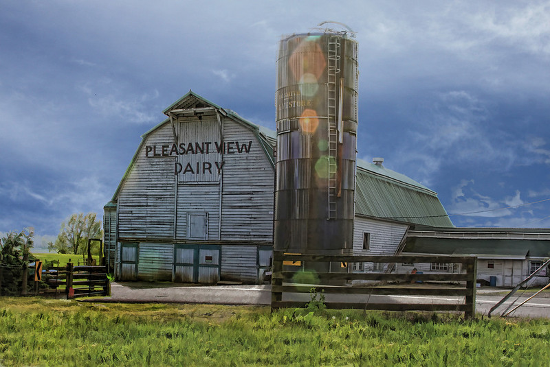 Pleasant View Dairy Blue sky