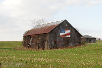 Barn with American Flag -- DSC_9488Rev