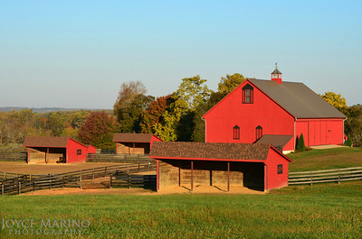 Barns & buildings