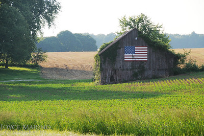 Barn with American flag -- DSC_4216