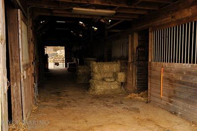 Horse barn -- DSC_6129