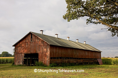 Wisconsin Tobacco Barn with Open Vents, Dane County, Wisconsin