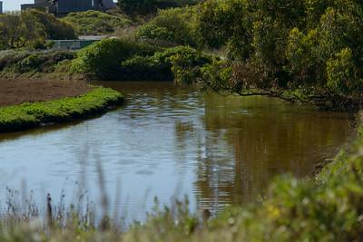 0013_d800b_76_Puffin_Lane_Pajaro_Dunes_Watsonville_Real_Estate_Photography