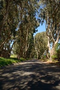 0038_d800b_76_Puffin_Lane_Pajaro_Dunes_Watsonville_Real_Estate_Photography