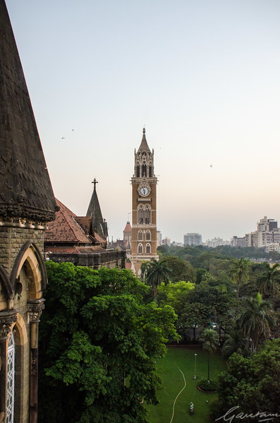 High Court lawns and Rajabhai Tower