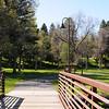 Library Bridge to Park DSC_2684