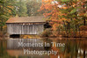 Covered bridge at Sturbridge MA