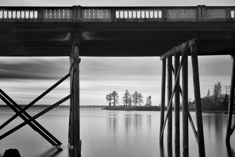 1-2-13 Young's Bay Bridge - This was a 25 second exposure taken using my Lee Big Stopper (10 ND filter).  The black and white conversion was done using Silver Effex 2.  I was thrilled to see my Snowy Owl image make it to the number one spot today.<br /> <br /> Critiques Welcome.