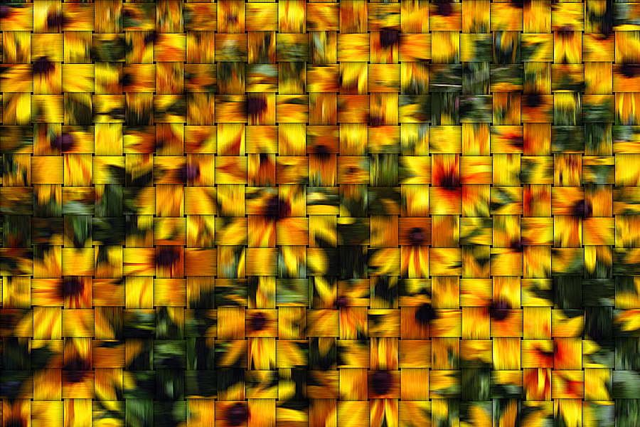 From the flower garden - basketweave filter - July 3, 2006
