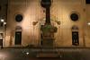 Pulcino della Minerva