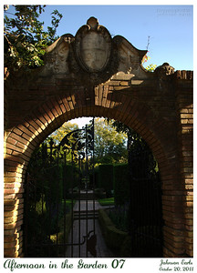 Afternoon in the Garden 07  Photos from Filoli, taken in the warm light of late afternoon.  Filoli, 20 October 2011