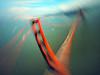Golden Gate by air