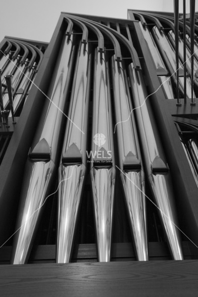 Chapel of the Christ Organ Pipes by wpekrul