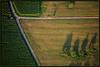 Weinberglandschaft von oben