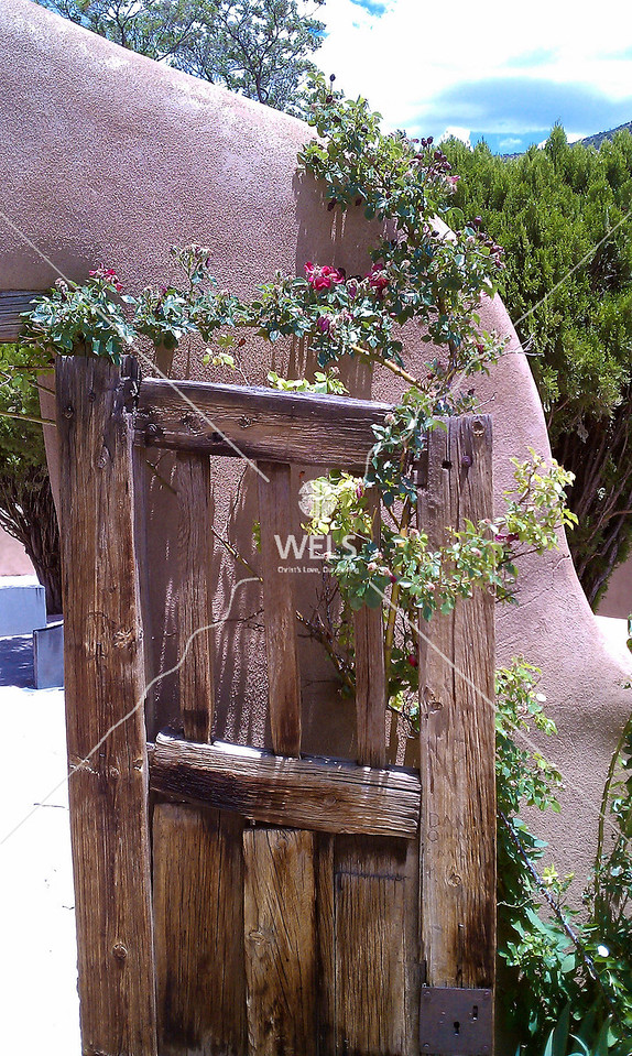 Adobe House Door in  New Mexico by mspriggs