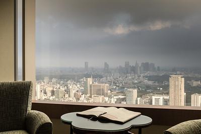 Ritz Carlton, Tokyo, September 2010