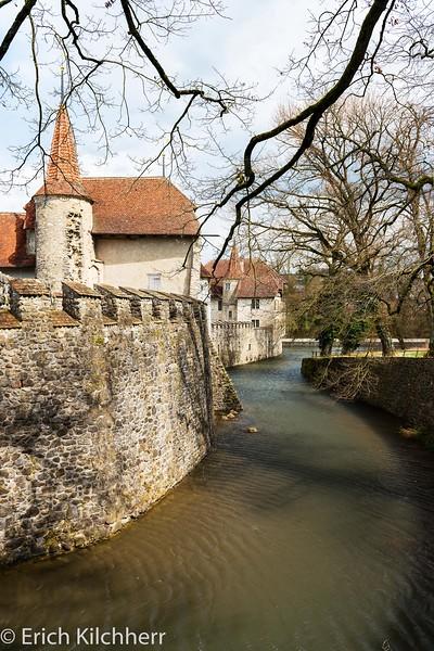 Moat of Hallwyl castle, Aargau