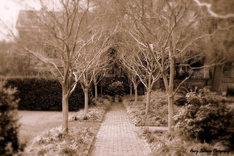 Garden<br /> Charleston SC