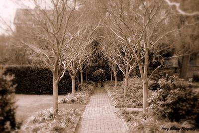 Garden Charleston SC