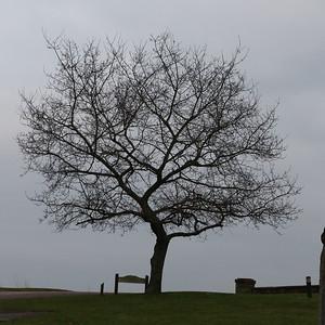 Chatelherault Country Park 1 January 2020
