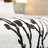 Photo by Tony Powell. Choice Hotels Sleep Inn Model Room. December 15, 2016