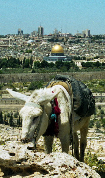 Jerusalem, Israel<br /> The Dome of the Rock, Temple Mount.